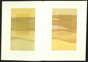 ne1850-t75-1987-yellow