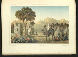 QL377-C5-H34-1876-Landscape