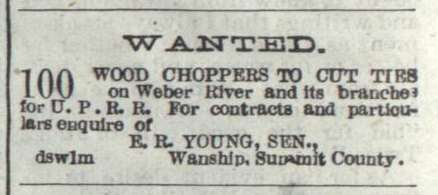 1881 Help Wanted Ad